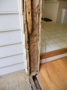Termite Treatment-Compare the Costs – Termite Damage vs Termite Prevention